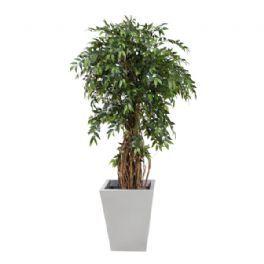 salg af Ficus, France - 170 cm. - kunstige træer