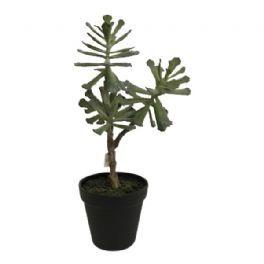 salg af Sukklent m/3 hoveder -  35 cm. - kunstig plante