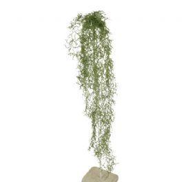 salg af Tillandsia hænger, 60 cm. - kunstige planter